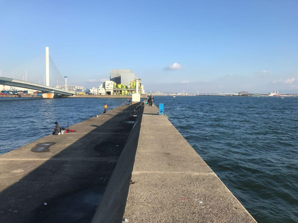 かもめ大橋の写真