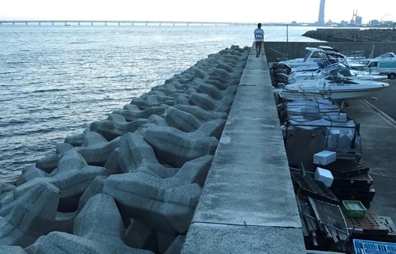 樽井漁港の風景