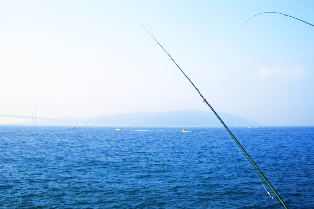 釣りの風景写真